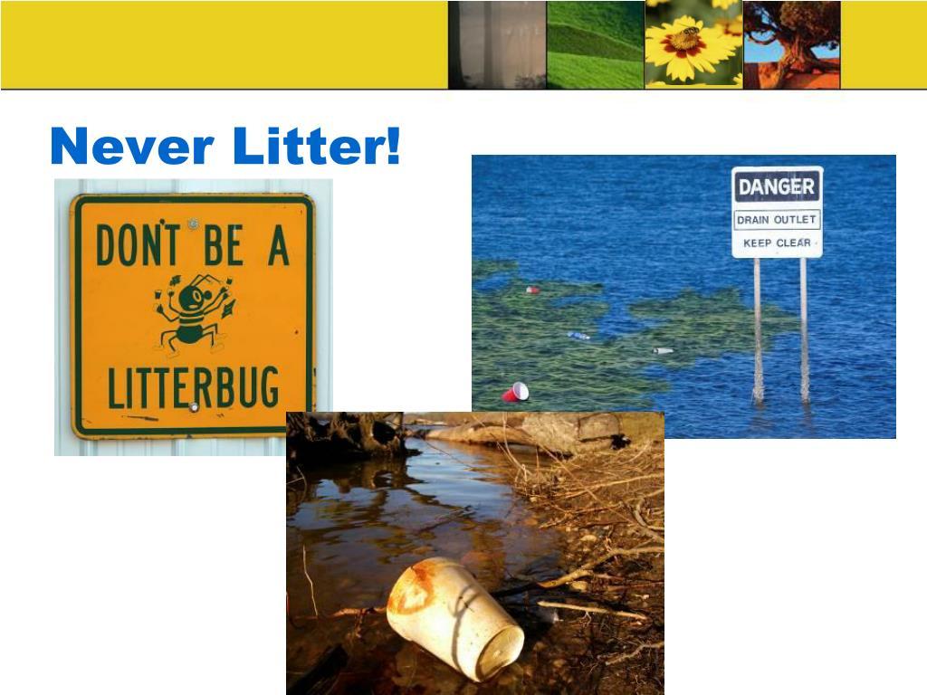 Never Litter!
