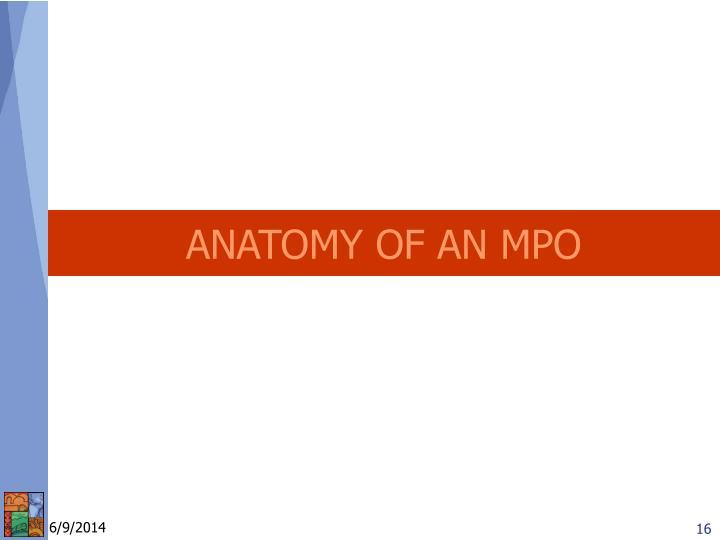 ANATOMY OF AN MPO