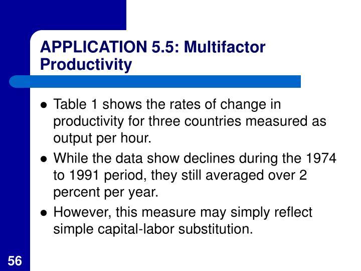 APPLICATION 5.5: Multifactor Productivity