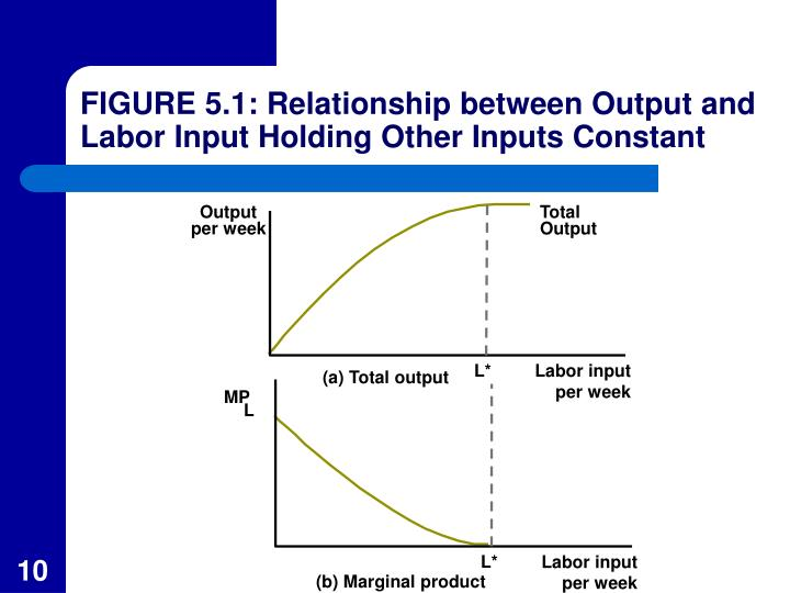 FIGURE 5.1: Relationship between Output and Labor Input Holding Other Inputs Constant