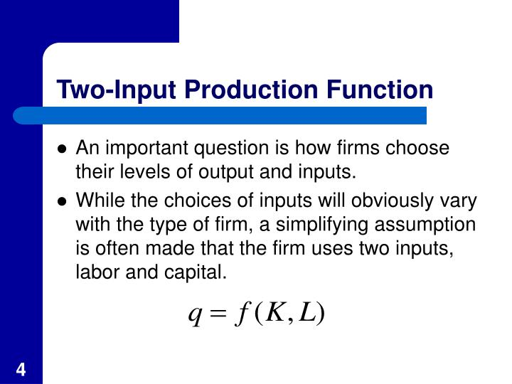 Two-Input Production Function