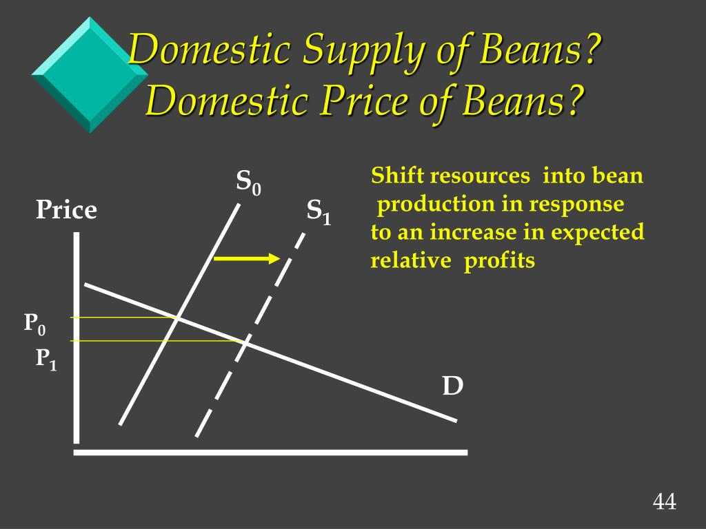 Domestic Supply of Beans?  Domestic Price of Beans?