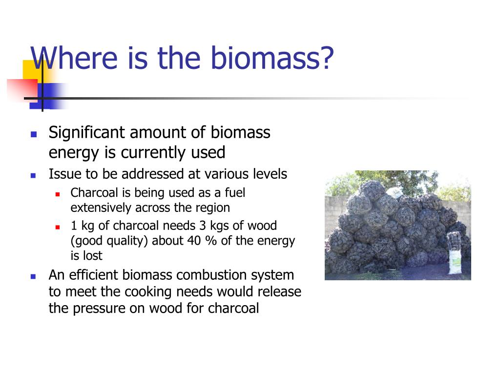 Where is the biomass?