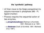 the synthetic pathway