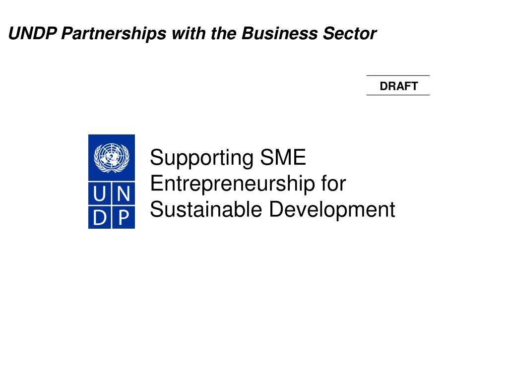 supporting sme entrepreneurship for sustainable development l.