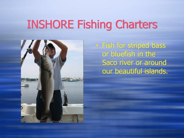 Inshore fishing charters3