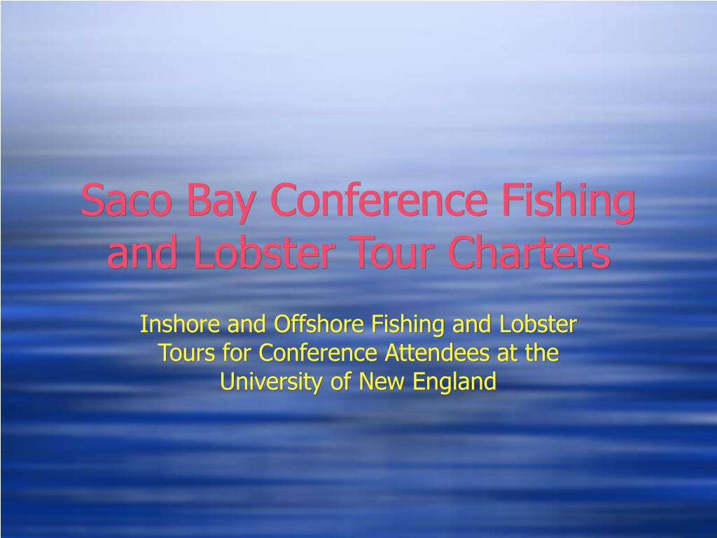 Saco Bay Conference Fishing and Lobster Tour Charters