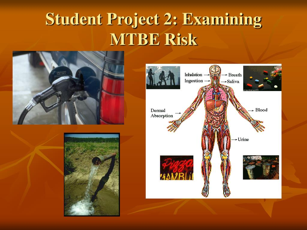 Student Project 2: Examining MTBE Risk