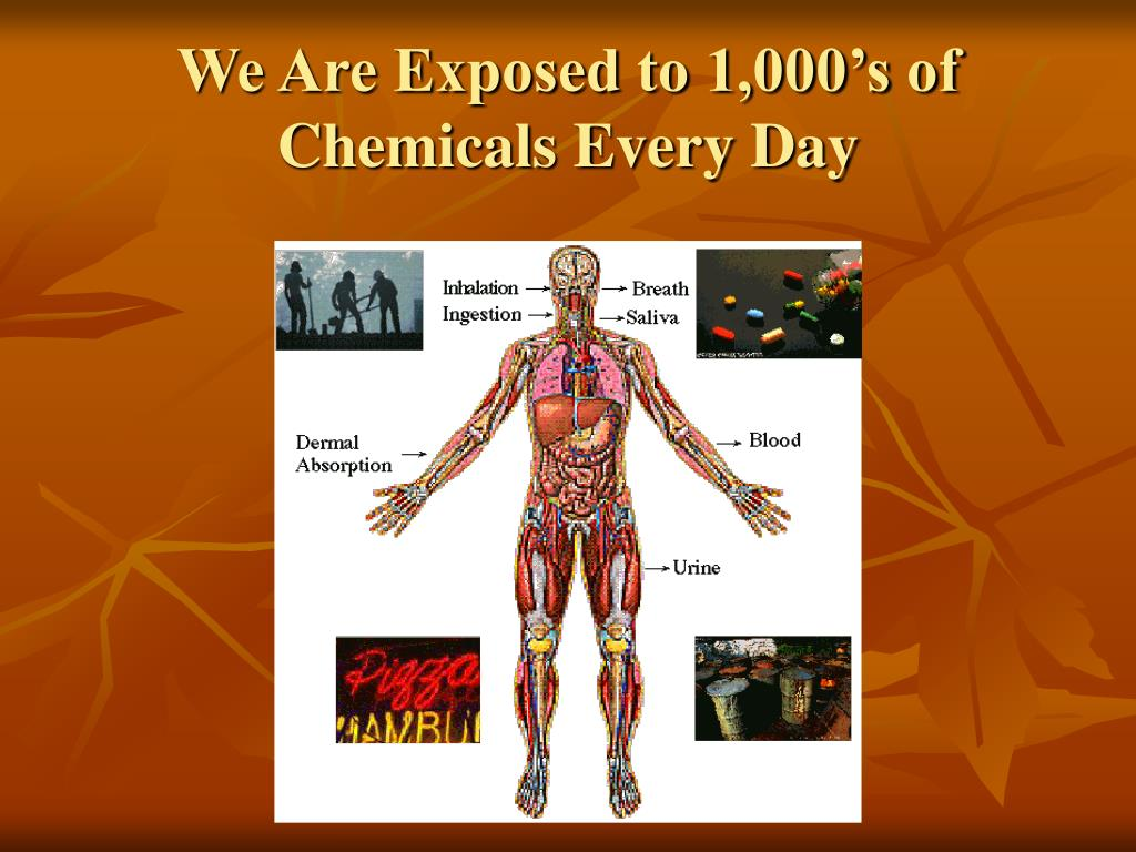 We Are Exposed to 1,000's of Chemicals Every Day