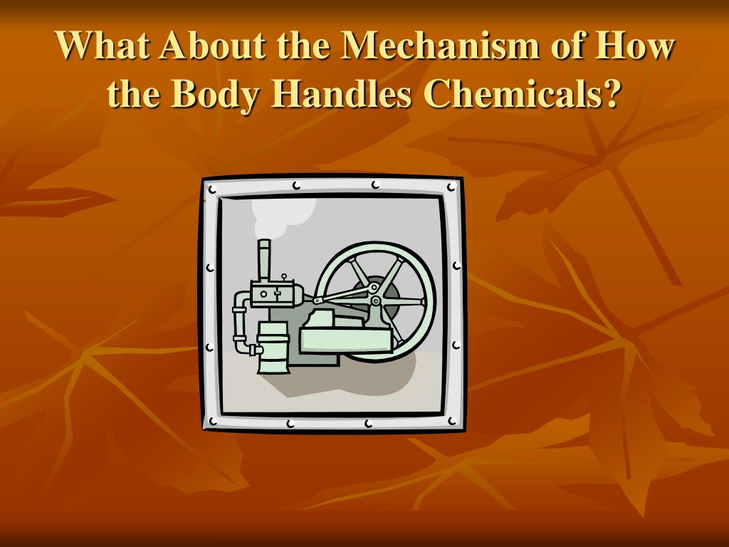 What About the Mechanism of How the Body Handles Chemicals?