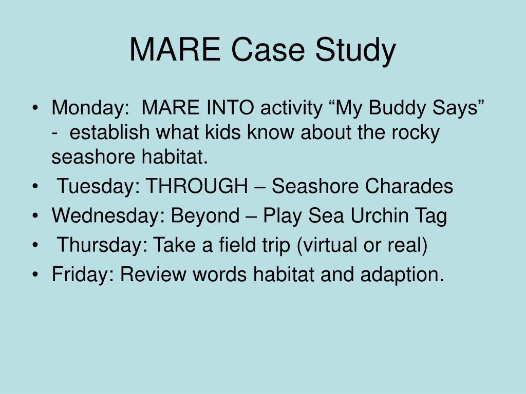 mare case study l.