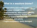 what is a seashore biome