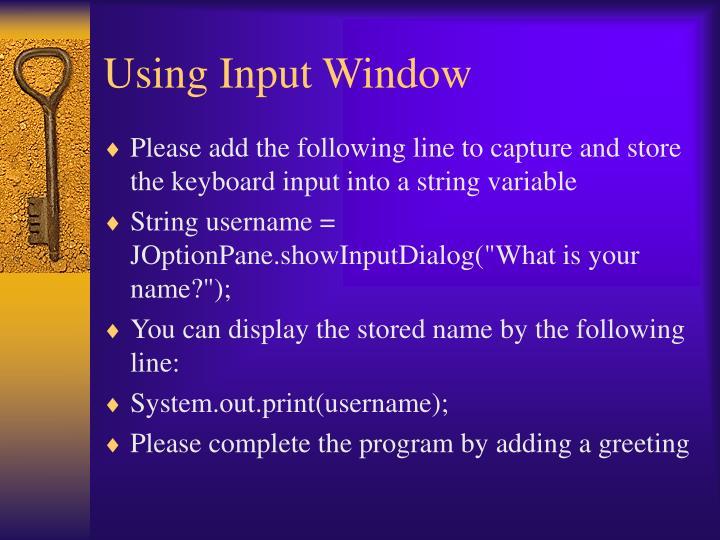 Using Input Window