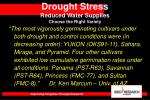 drought stress reduced water supplies choose the right variety