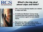 what s the big deal about slips and falls