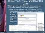 online theft fraud and other dot cons2