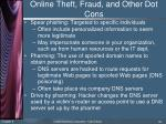 online theft fraud and other dot cons3
