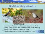 birds less likely at feeders