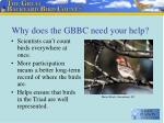 why does the gbbc need your help