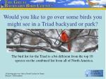 would you like to go over some birds you might see in a triad backyard or park