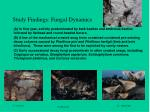 study findings fungal dynamics