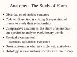 anatomy the study of form