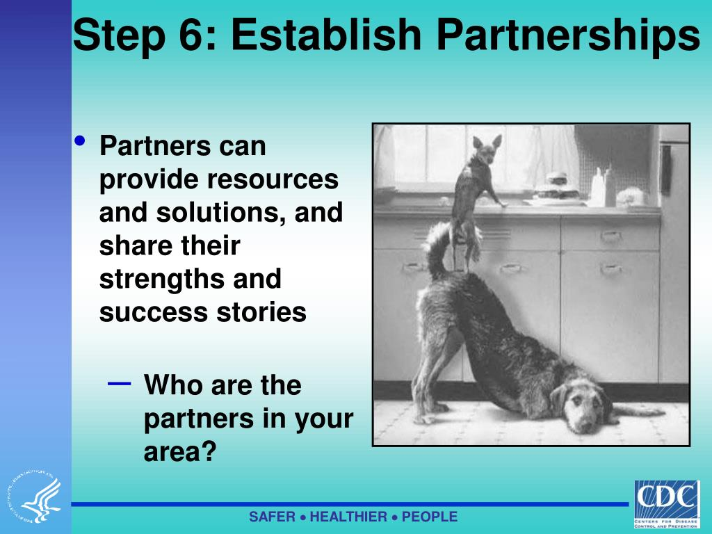 Step 6: Establish Partnerships