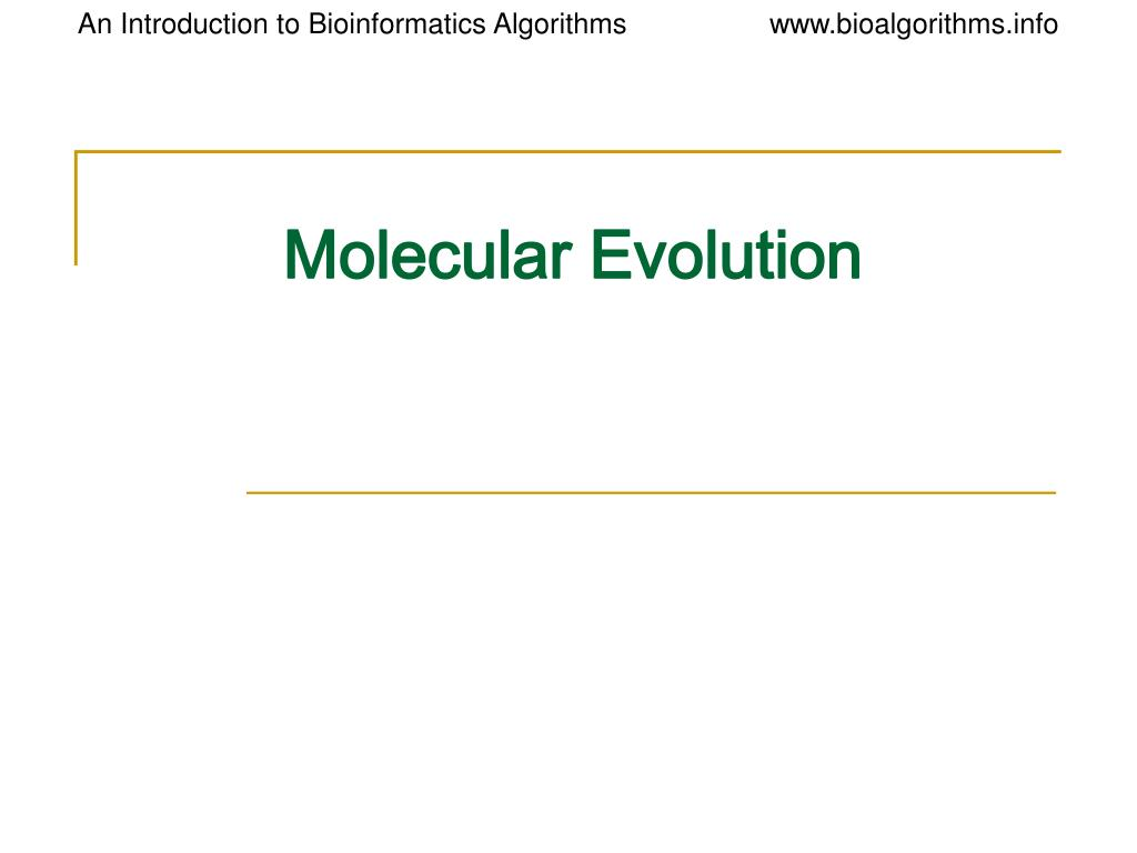 molecular evolution l.