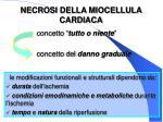 necrosi della miocellula cardiaca