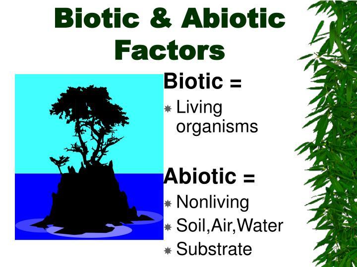 Biotic abiotic factors