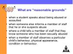 what are reasonable grounds