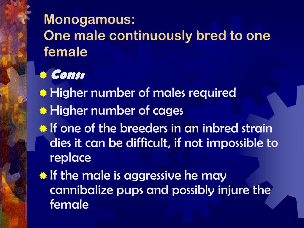 Monogamous: