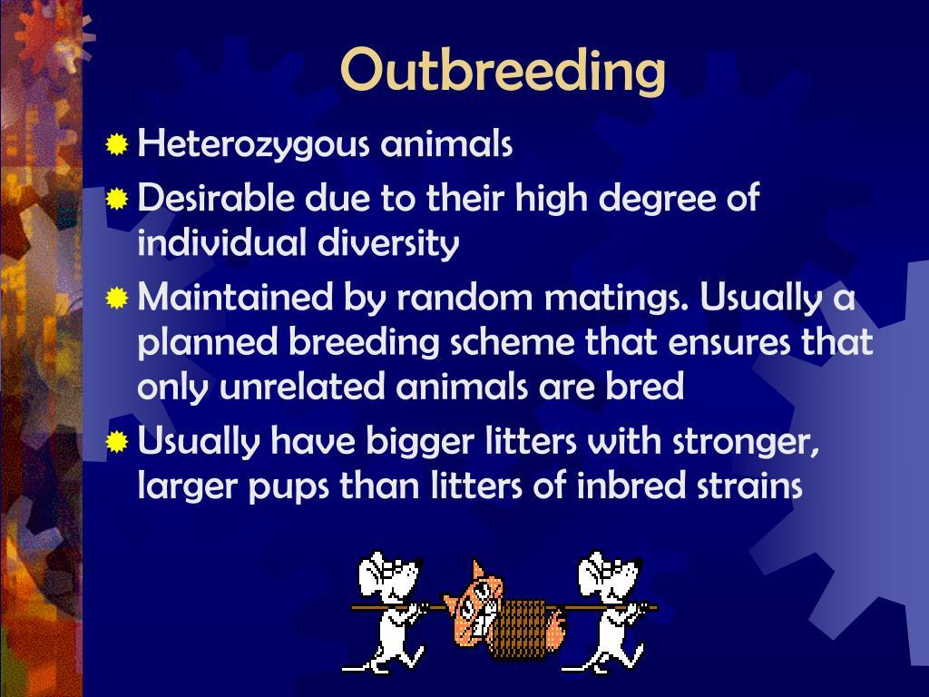 Outbreeding