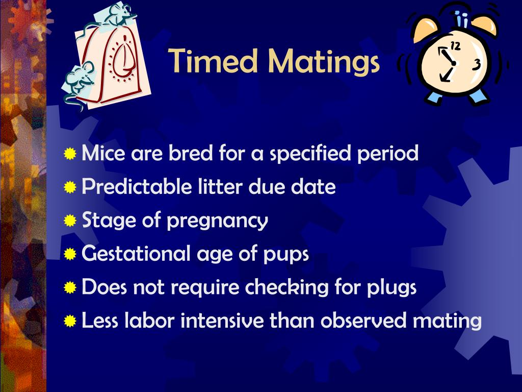Timed Matings