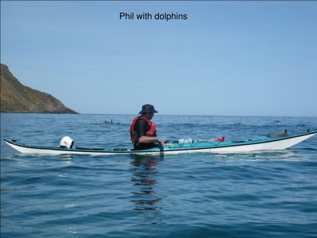 Phil with dolphins