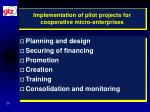 implementation of pilot projects for cooperative micro enterprises