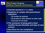 pilot project uruguay deadlines payments and sanctions