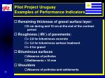 pilot project uruguay examples of performance indicators