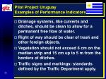 pilot project uruguay examples of performance indicators26