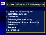 process of forming a micro enterprise