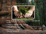 7 menanam pohon