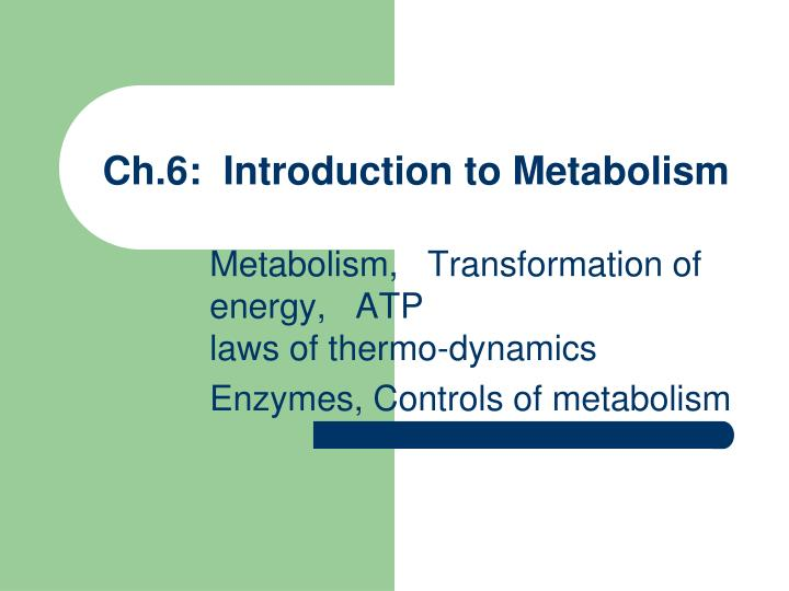 Ch 6 introduction to metabolism