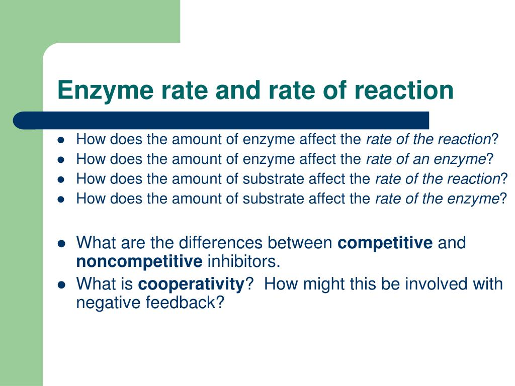 Enzyme rate and rate of reaction