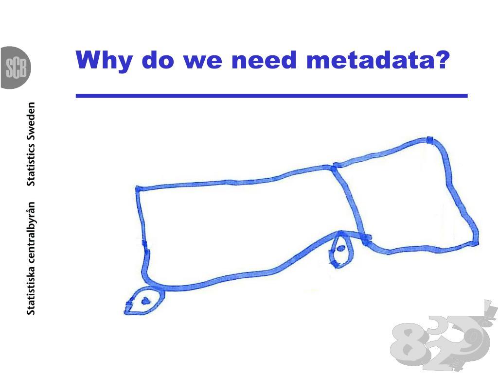 Why do we need metadata?