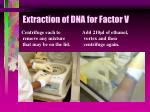 extraction of dna for factor v54