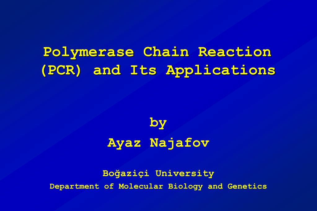 polymerase chain reaction pcr and its applications l.