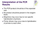interpretation of the pcr results