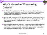 why sustainable winemaking ontario