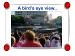a bird s eye view