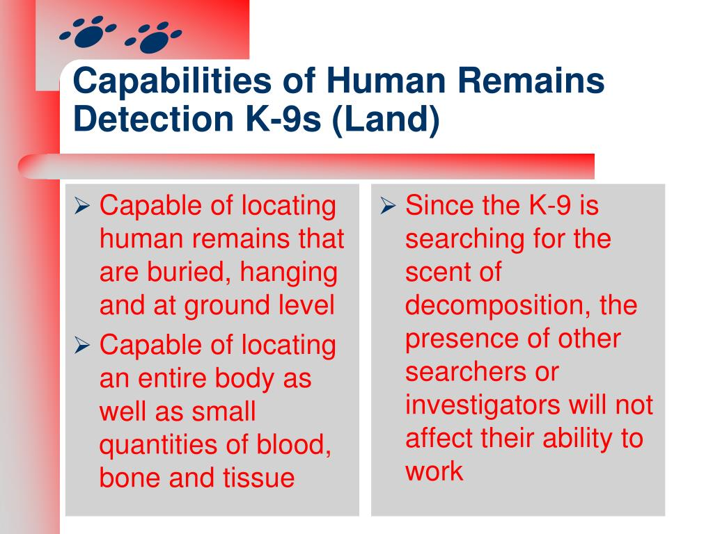 Capabilities of Human Remains Detection K-9s (Land)